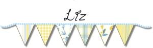 liz banner hrt